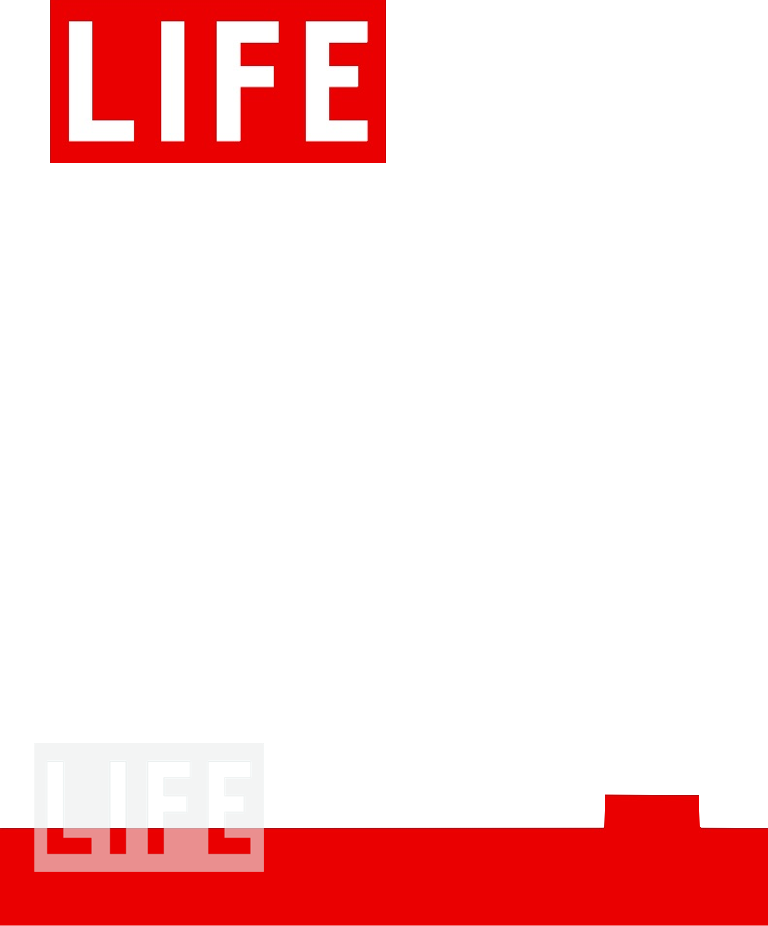 this is your life template - life magazine cover dryden art